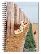 Cattle Feeding Spiral Notebook