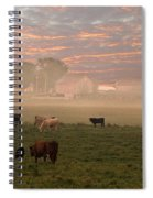 Cattle In The Fog Spiral Notebook