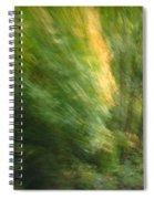 Caught Away Spiral Notebook