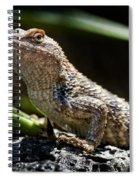 Cautious Model Spiral Notebook
