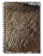 Cave Art: Incised Rock Spiral Notebook