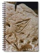Cave Art: Vulva Spiral Notebook
