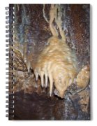 Cave Formations 31 Spiral Notebook