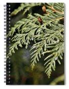Cedar Due Droplets Spiral Notebook