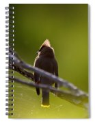 Cedar Waxwing Perched In Tree Spiral Notebook