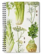 Celery - Fennel - Dill And Celeriac  Spiral Notebook