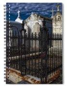 Cemetery Landscape Spiral Notebook