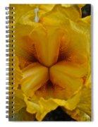 Center Point  Spiral Notebook
