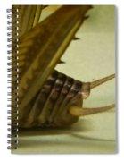 Cerci Of Cave Cricket Spiral Notebook
