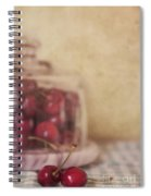 Cerise Spiral Notebook