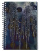 Chainmail Spiral Notebook