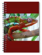 Chameleon Close Up Spiral Notebook