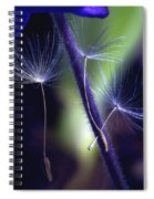 Chances Are... Spiral Notebook