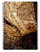 Chandelier Shimmer Spiral Notebook