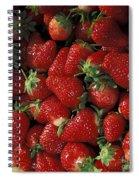 Chandler Strawberries Spiral Notebook