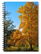 Changing Leaves Spiral Notebook