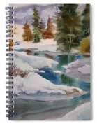 Changing Seasons Spiral Notebook
