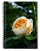 Charles Darwin Rose Spiral Notebook