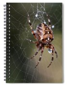 Charlottes Bigger Friend Spiral Notebook