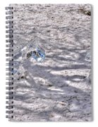 Chasing Snowflakes Spiral Notebook