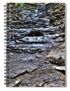 Chasing The Eternal Flame At Chestnut Ridge Park Spiral Notebook