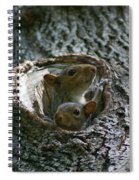 Checking Out The Photographer Spiral Notebook