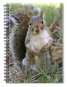 Checking Things Out Spiral Notebook