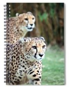 Cheetah Brothers Spiral Notebook