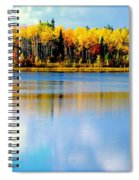Chena Lake Drama Lll Spiral Notebook
