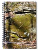 Cherokee Face Spiral Notebook