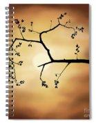 Cherry Blossom Over Dramatic Sky Spiral Notebook