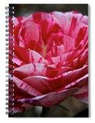 Cherry Chip Scentimental Spiral Notebook