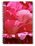 Cherry Chip Swirl Spiral Notebook