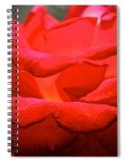 Cherry Red Rose Spiral Notebook