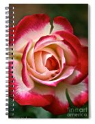 Cherry Vanilla Rose Spiral Notebook