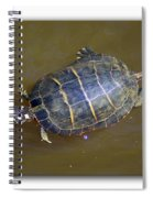 Chester River Turtle Spiral Notebook