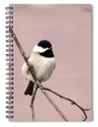 Chick In Pink Spiral Notebook
