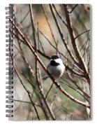 Chickadee Sunshine Spiral Notebook