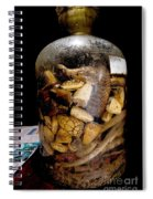 Chinese Snake Wine Spiral Notebook