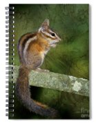 Chipmunk In The Forest Spiral Notebook