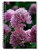 Chive Blossom Spiral Notebook