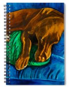 Chocolate Lab On Couch Spiral Notebook
