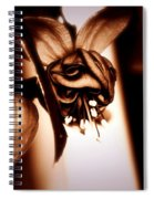 Chocolate Silk Fuchsia II Spiral Notebook