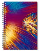 Cholesterol Crystal Spiral Notebook