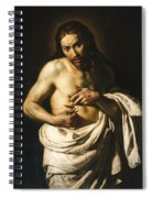 Christ Displaying His Wounds Spiral Notebook