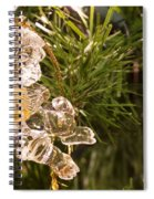 Christmas Crystal Angel 1 B Spiral Notebook
