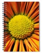 Chrysanthemum Spiral Notebook