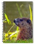 Chucky Woodchuck Spiral Notebook