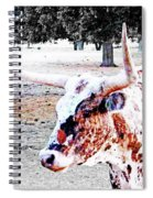 Cibolo Ranch Steer Spiral Notebook