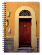 Cicada Door Arles France Spiral Notebook